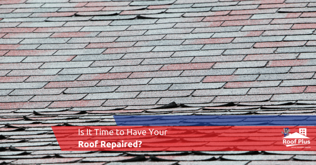 Roof Plus' expert advice on when to have your roof repaired.